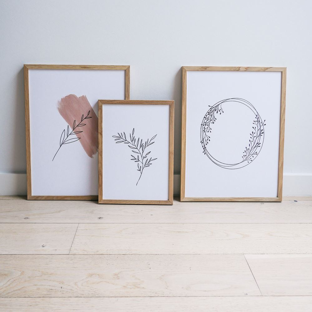 "Trio d'illustrations ""Nature"""